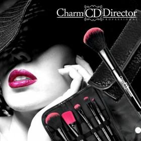 CHARM DIRECTOR Sada štetcov makeup 5 kusov